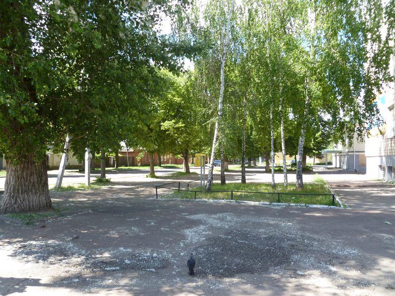 Chernihiv Saturday 034